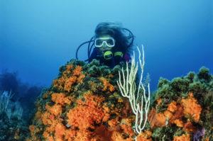 Discover Scuba Diving Krk Croatia